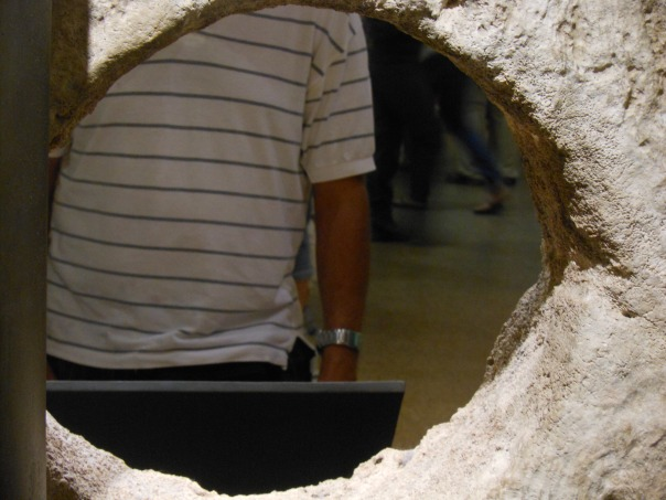Subject through rai hole at Smithsonian Museum of Natural History